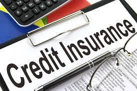 Credit Insurance-4e24a5ca
