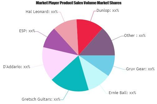 Guitar Straps Market-f94405a8